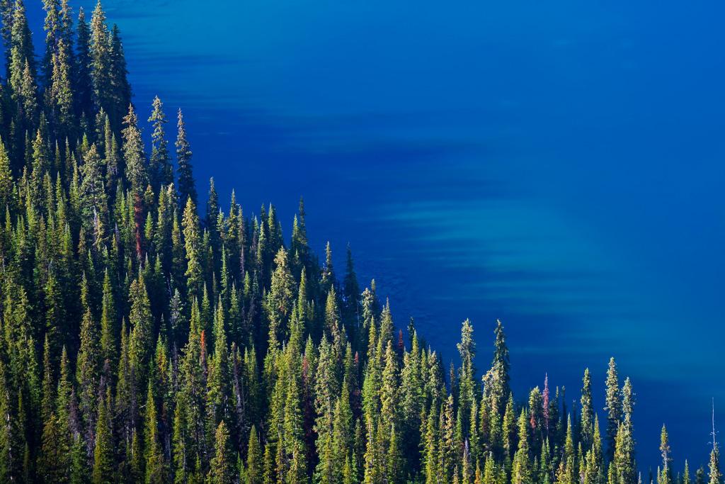 Озеро Охара в Канаде, фото 7