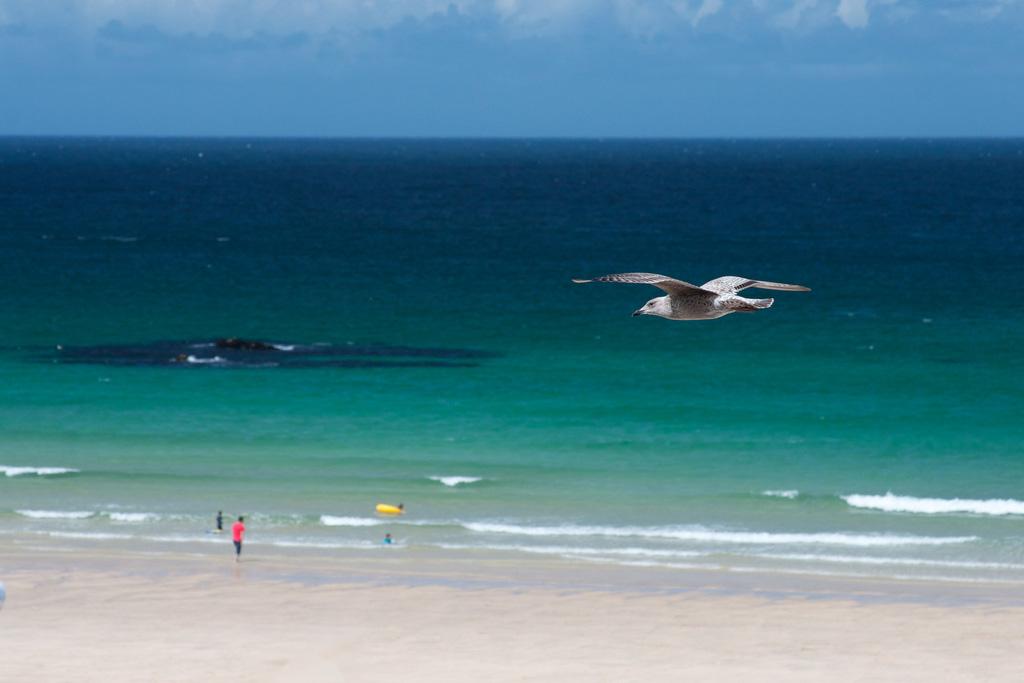 Пляж Портминстер в Великобритании, фото 4