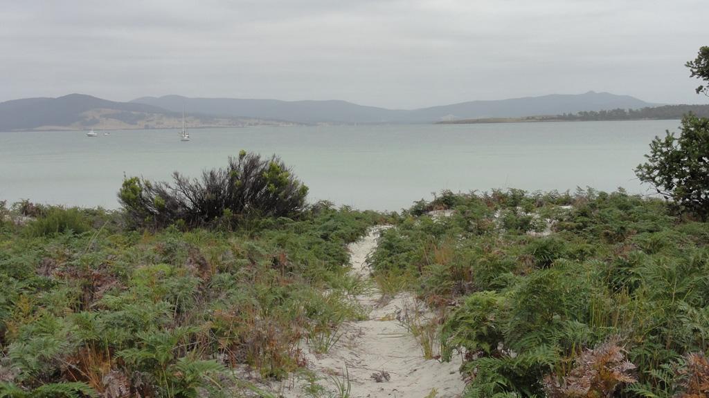 Пляж Ридл в Австралии, фото 3