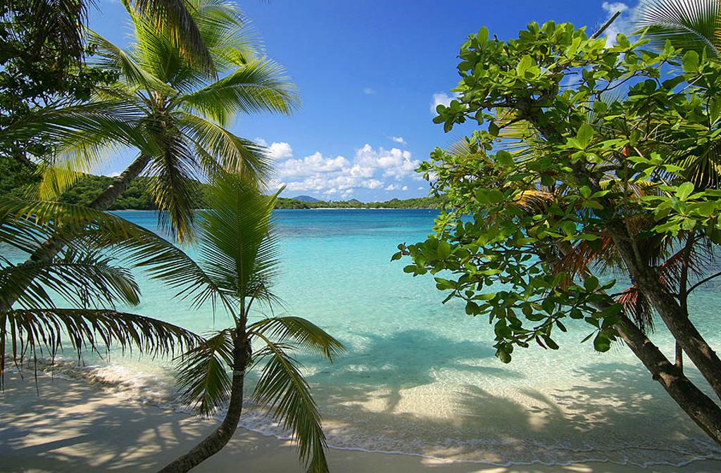 Пляж Сент Джон на Американских Виргинских островах, фото 1
