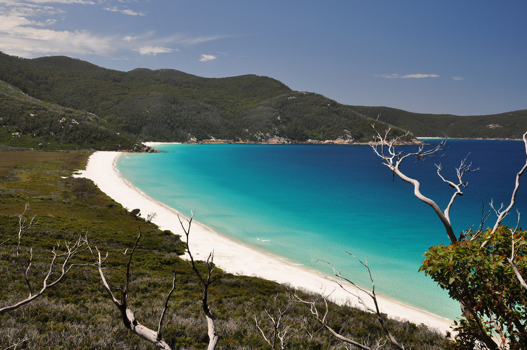 Пляж Ватерлоо в Австралии, фото 4