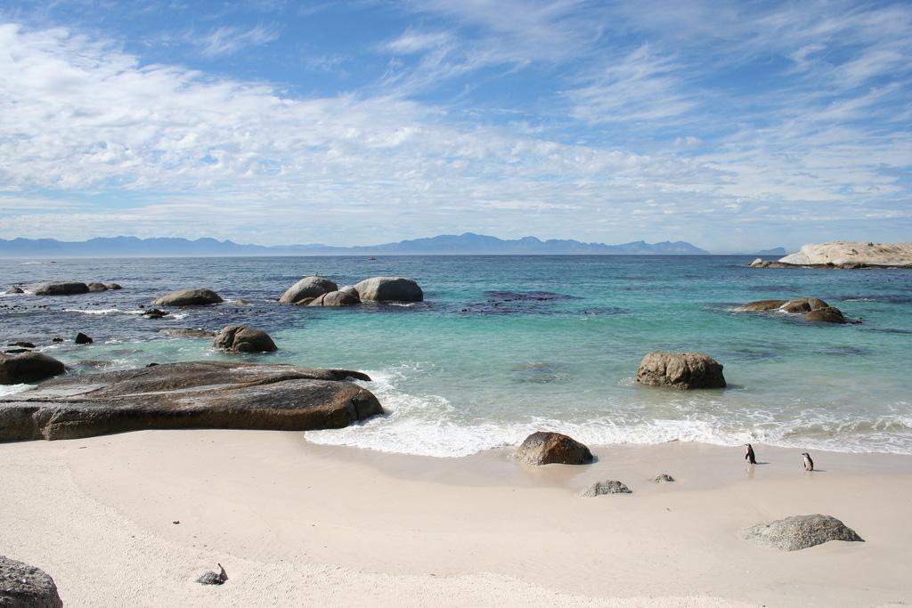 Пляж Боулдерс в ЮАР-е, фото 5