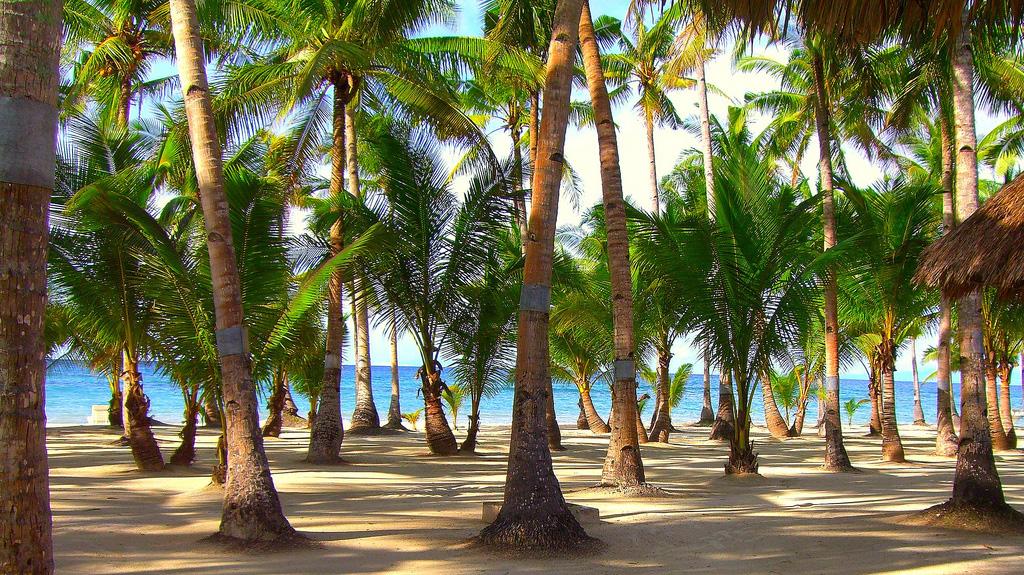 Пляж острова Бохол на Филиппинах, фото 1