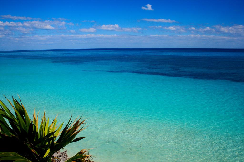 Пляж Тулум в Мексике, фото 3