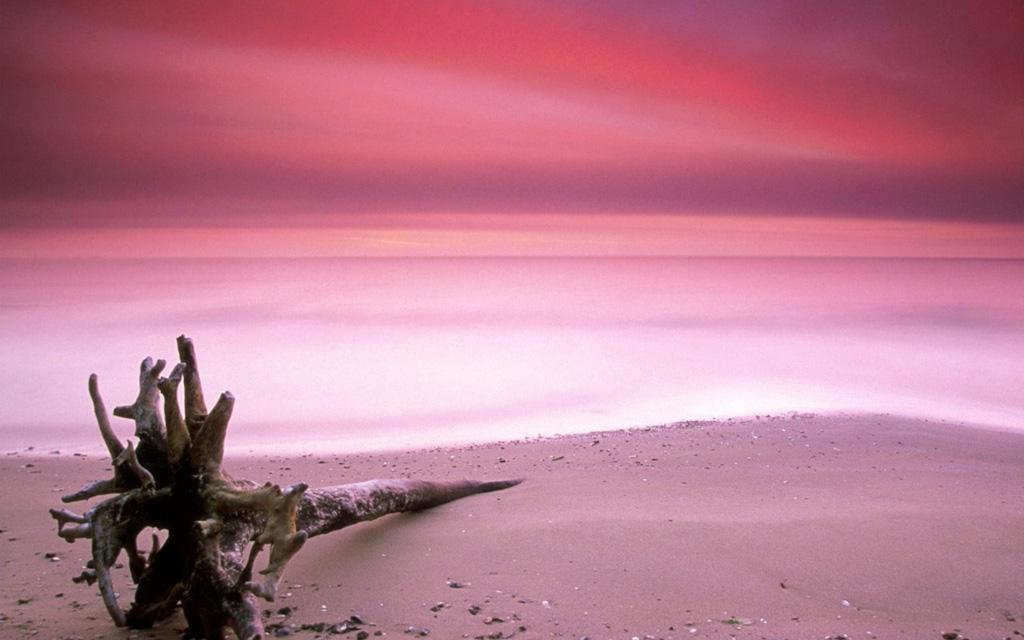 Пляж Харбор на Багамских островах, фото 5