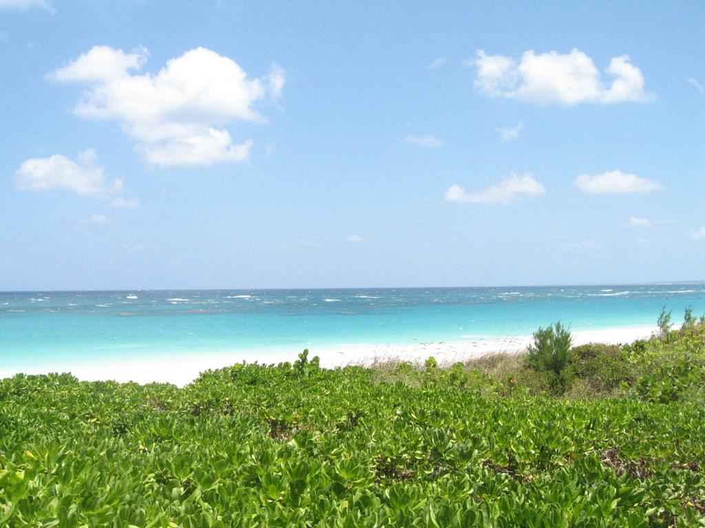 Пляж Харбор на Багамских островах, фото 6