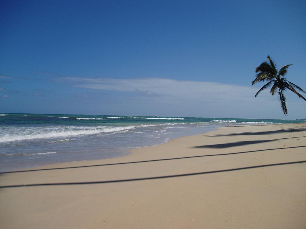 Пляж Баваро в Доминикане, фото 4