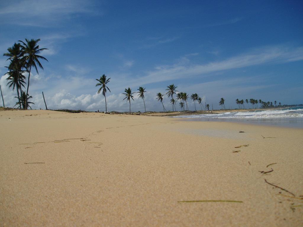 Пляж Баваро в Доминикане, фото 5