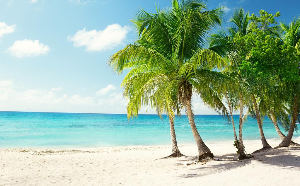 Пляж Бонайре на Нидерландских Антильских островах, фото 5
