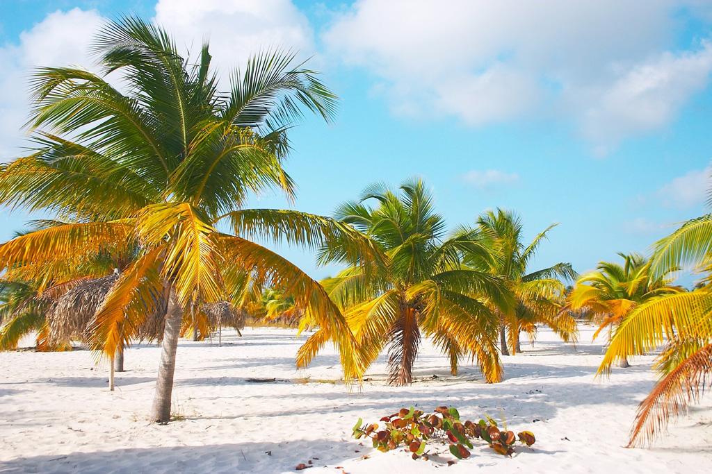 Пляж Кайо Ларго на Кубе, фото 1