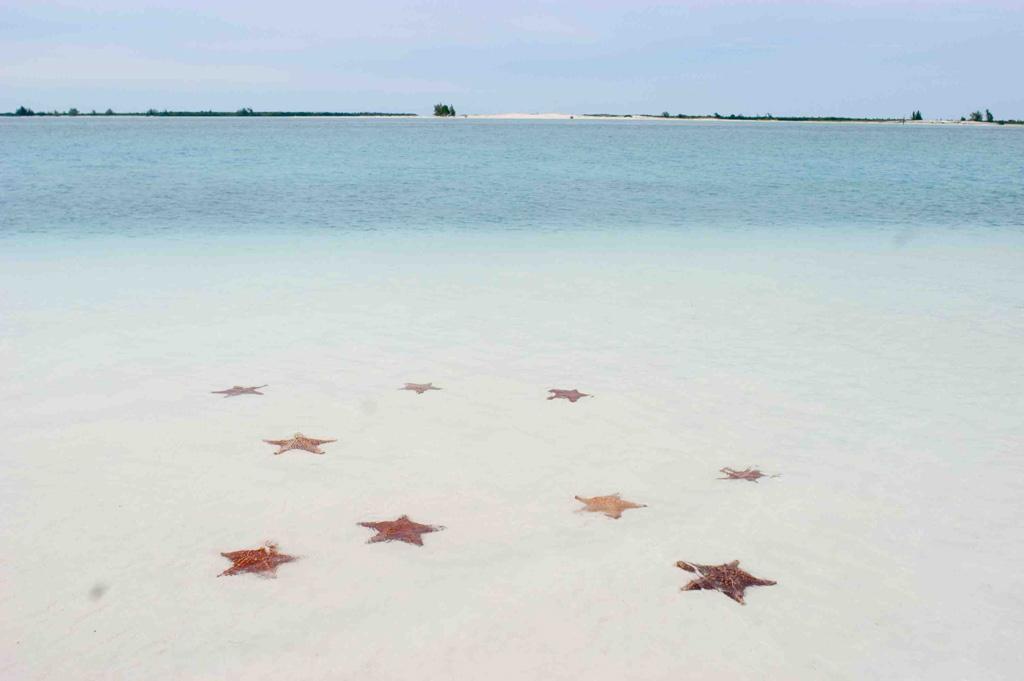 Пляж Кайо Ларго на Кубе, фото 4