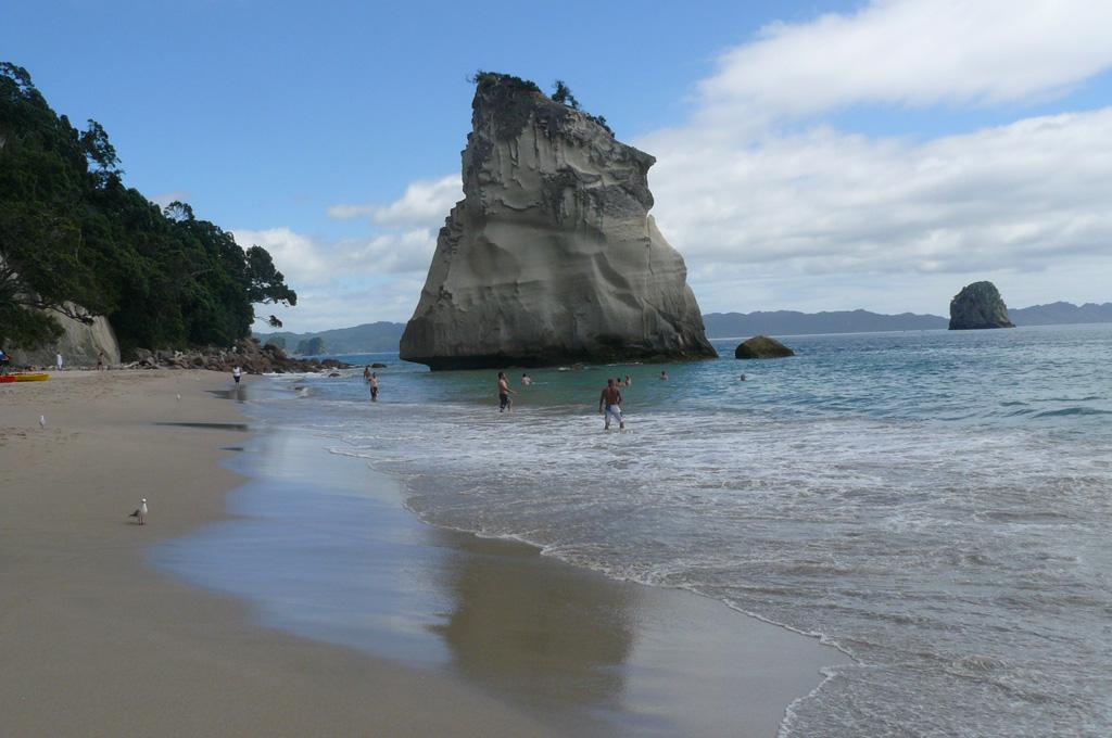 Пляж Коромандел в Новой Зеландии, фото 3
