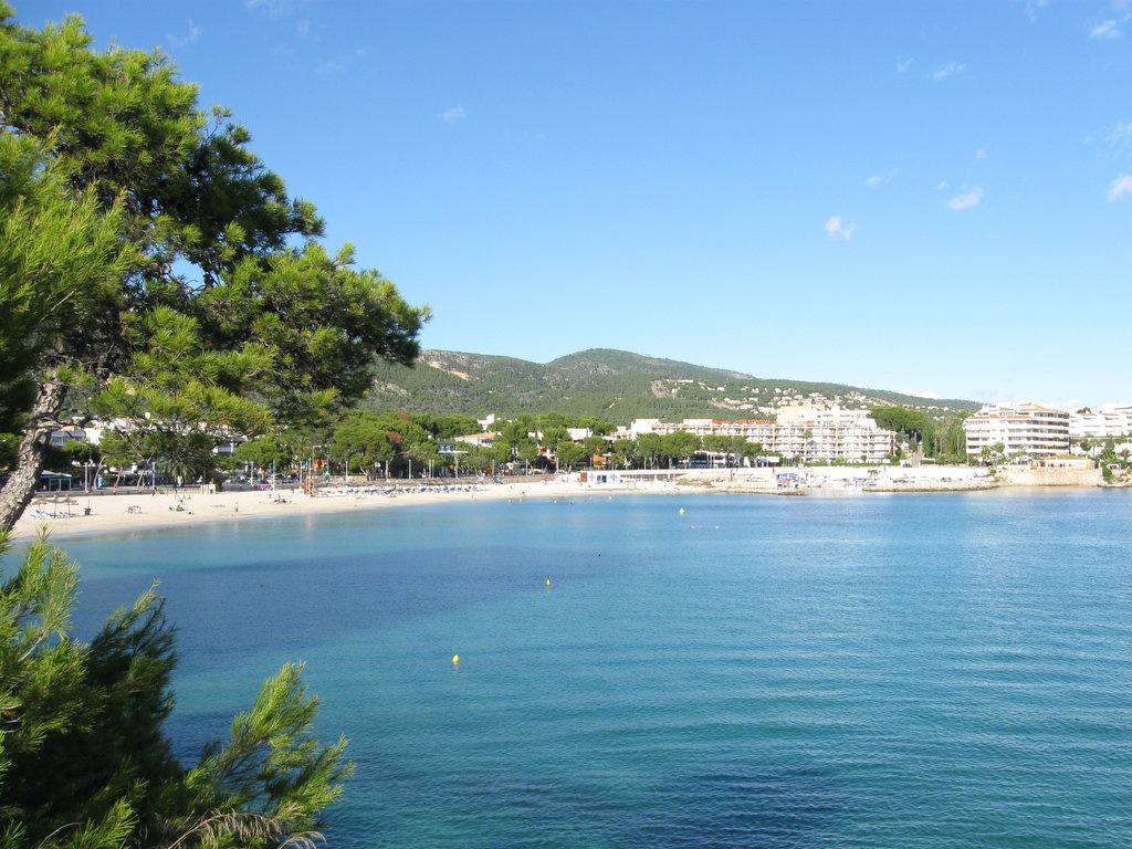 Пляж Пальма Нова в Испании, фото 3