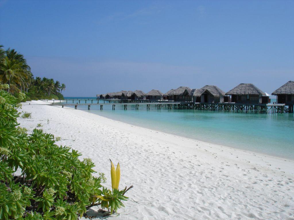 Пляж Конрад Рангали на Мальдивах, фото 19