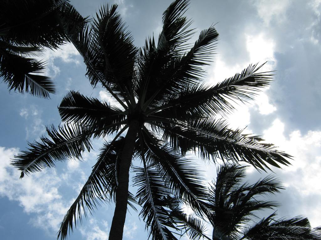 Пляж Нуса-Дуа в Индонезии, фото 5