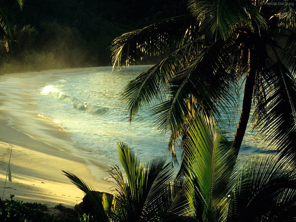 Пляж Анс Интенданс на Сейшельских Островах, фото 1