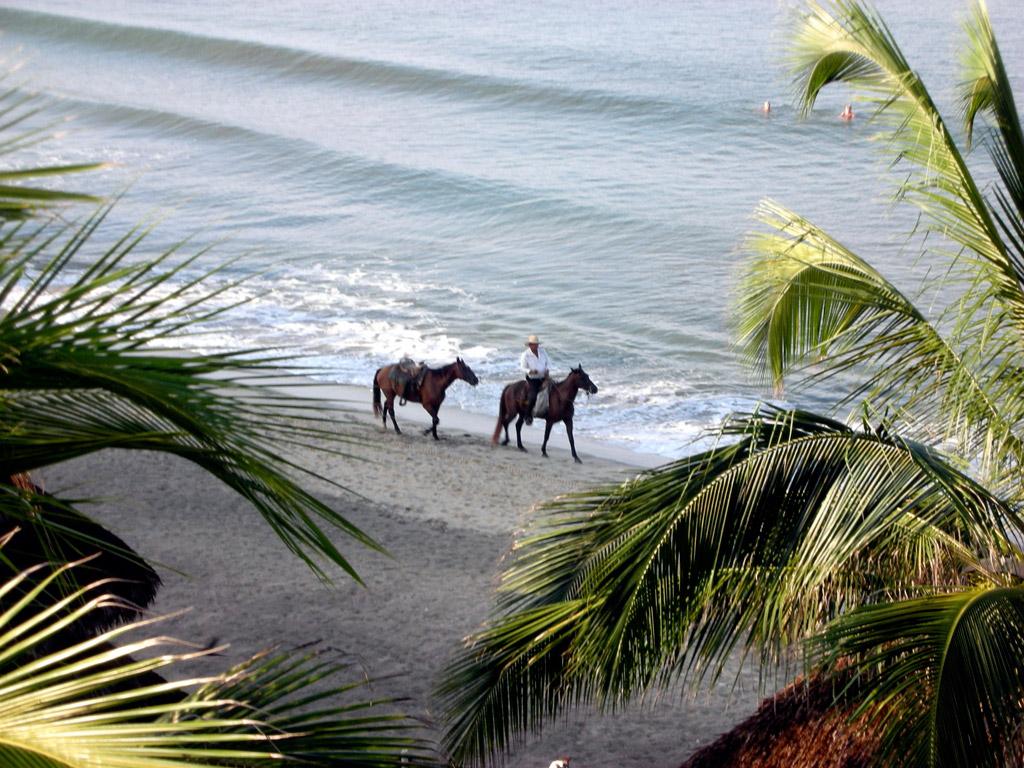 Пляж Нуэво-Вальярта в Мексике, фото 10