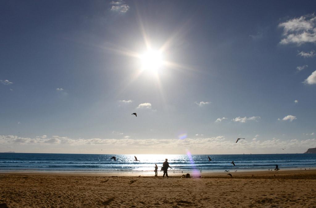 Пляж Сан-Диего в США, фото 12