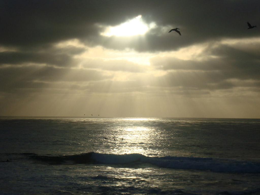 Пляж Сан-Диего в США, фото 16