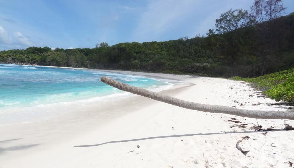 Пляж Анс Кокос на Сейшелах, фото 6