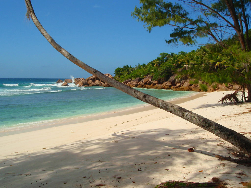 Пляж Анс Кокос на Сейшелах, фото 10