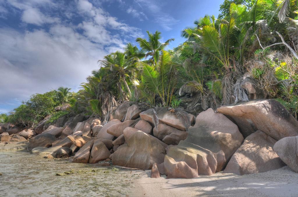 Пляж Анс Кокос на Сейшелах, фото 13