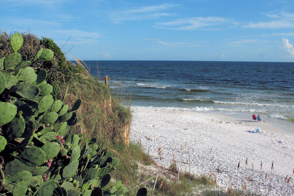 Пляж Блу Маунтин в США, фото 11