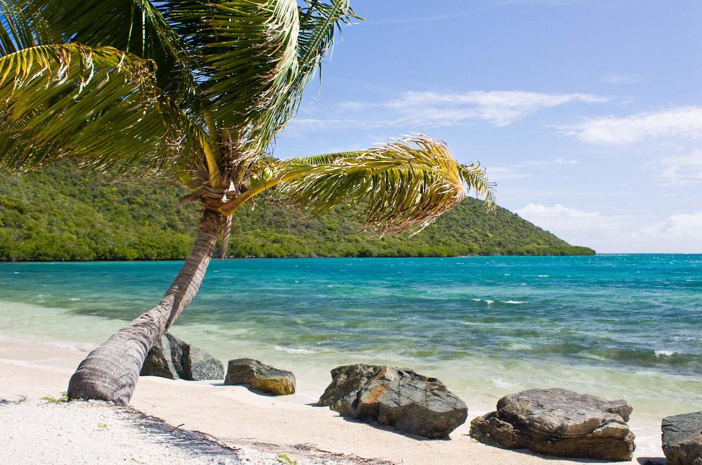 Пляж Дип Бэй на Британских Виргинских Островах, фото 16