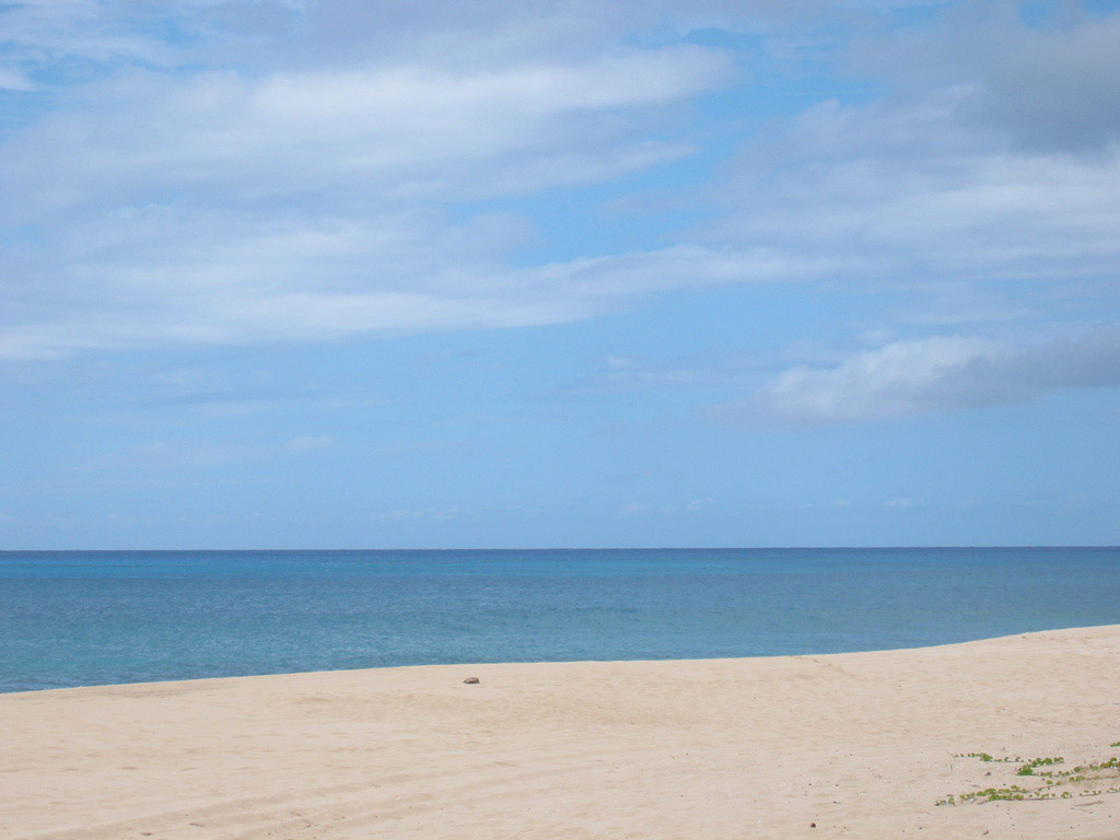 Пляж Йокогама Бэй в США, фото 2