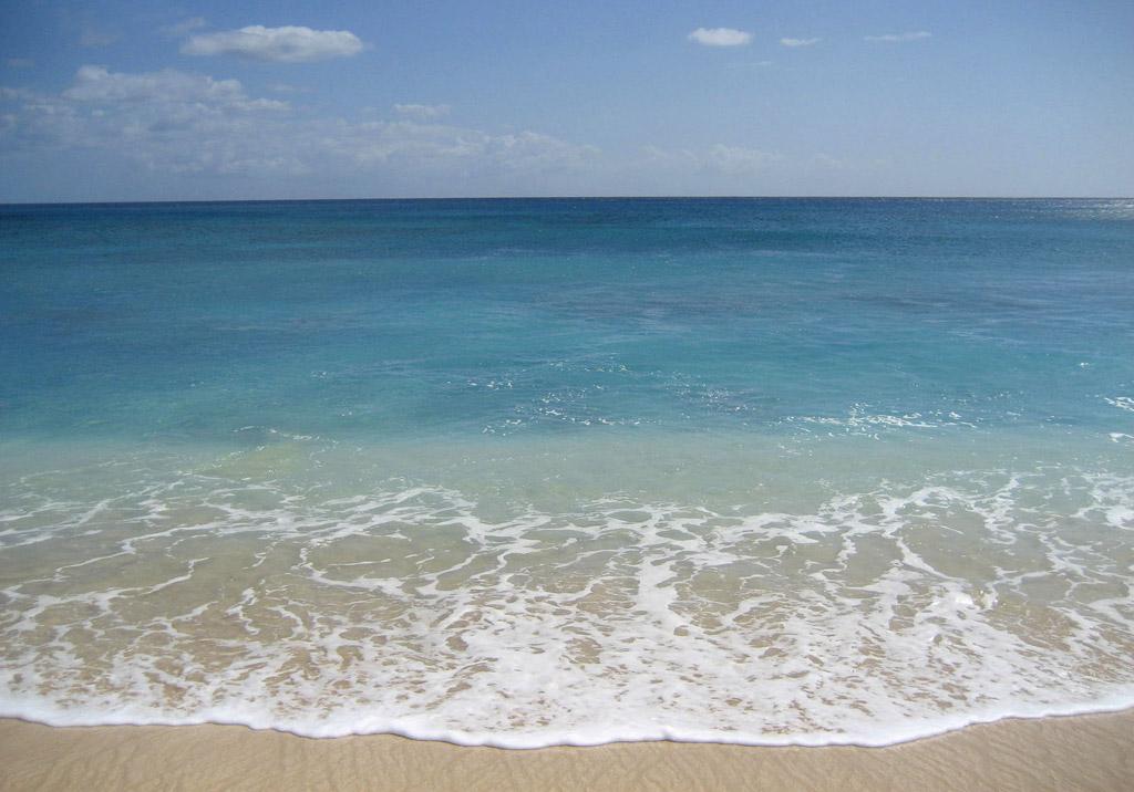 Пляж Йокогама Бэй в США, фото 5