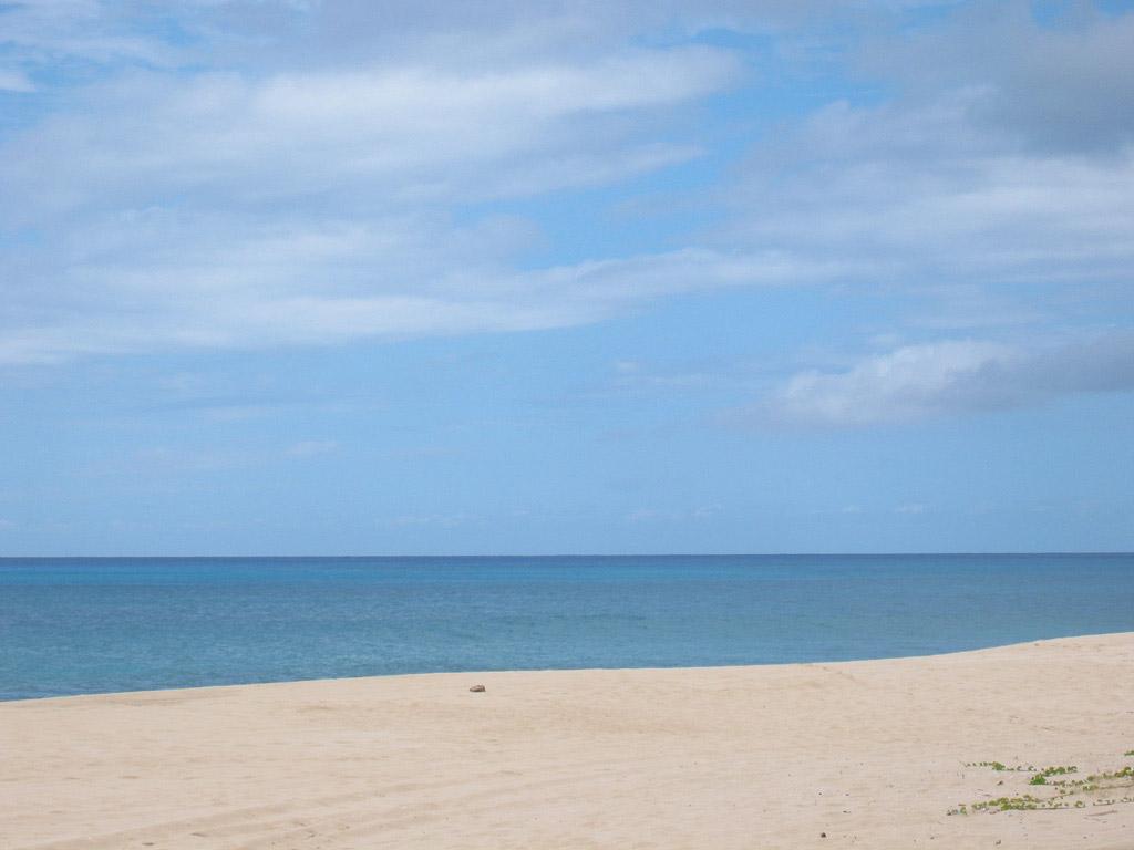 Пляж Йокогама Бэй в США, фото 7