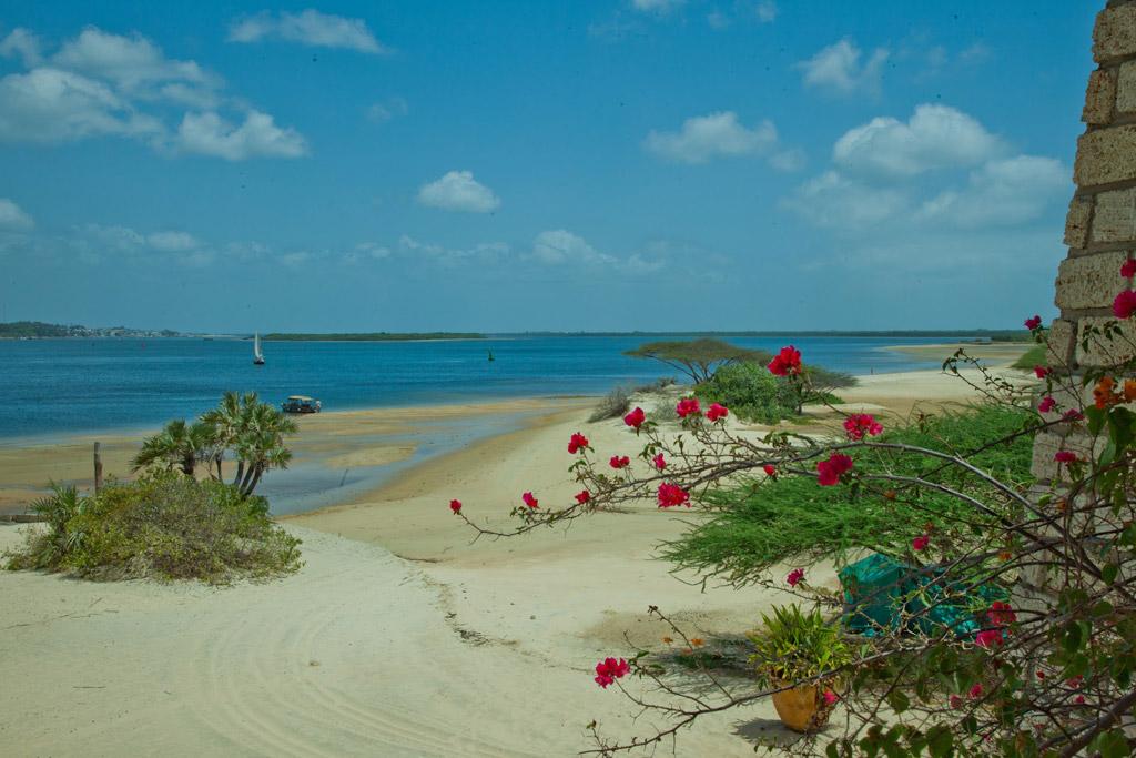 Пляж Ламу в Кении, фото 9