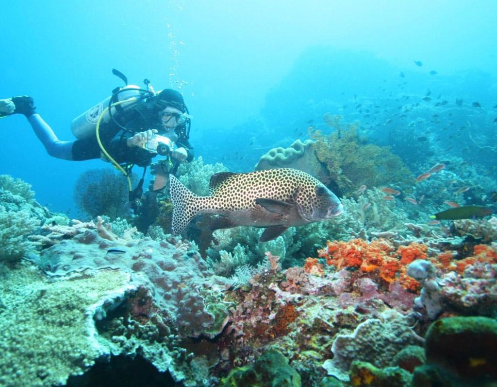 Пляж Нуса-Лембонган в Индонезии, фото 5