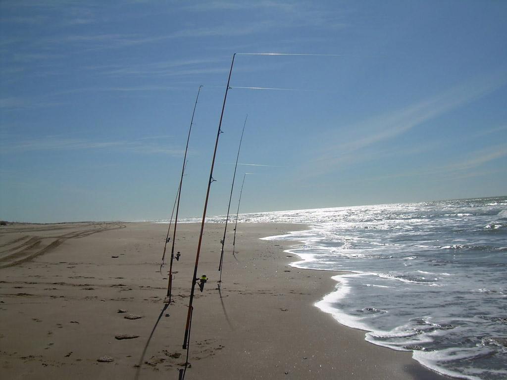 Пляж Пинамар в Аргентине, фото 13