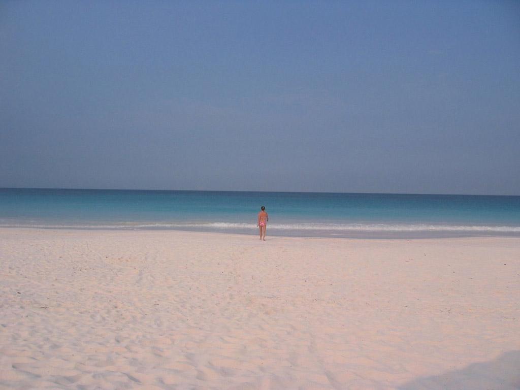 Пляж Пинк Сэндс на Багамских Островах, фото 3