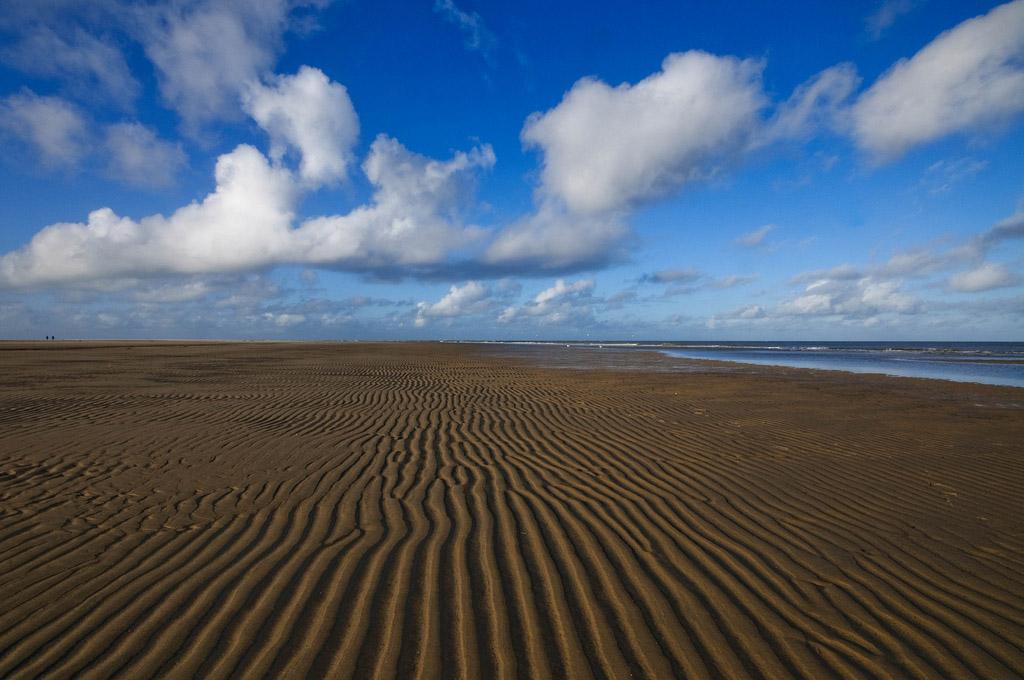 Пляж Тексель в Нидерландах, фото 7