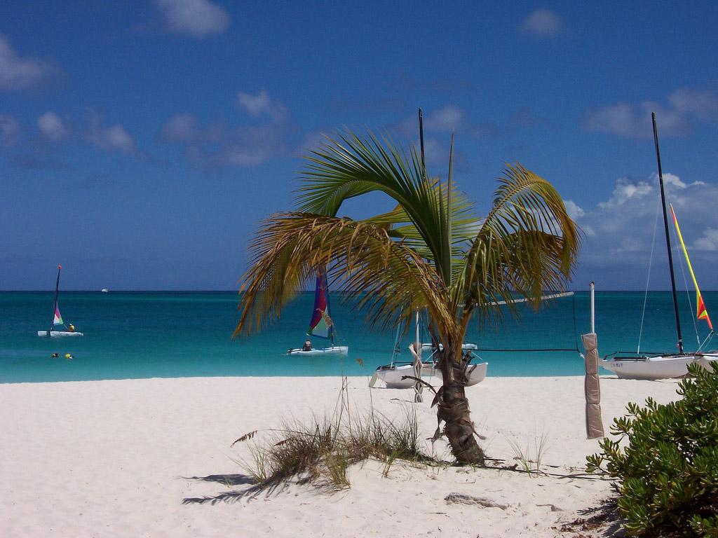 Пляж Теркс и Кайкос на Карибских Островах, фото 17