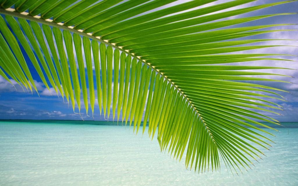 Пляж Варадеро на Кубе, фото 25