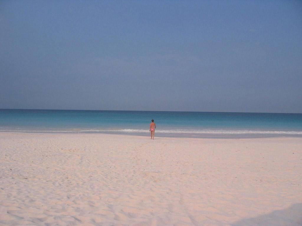 Пляж Васага в Канаде, фото 3