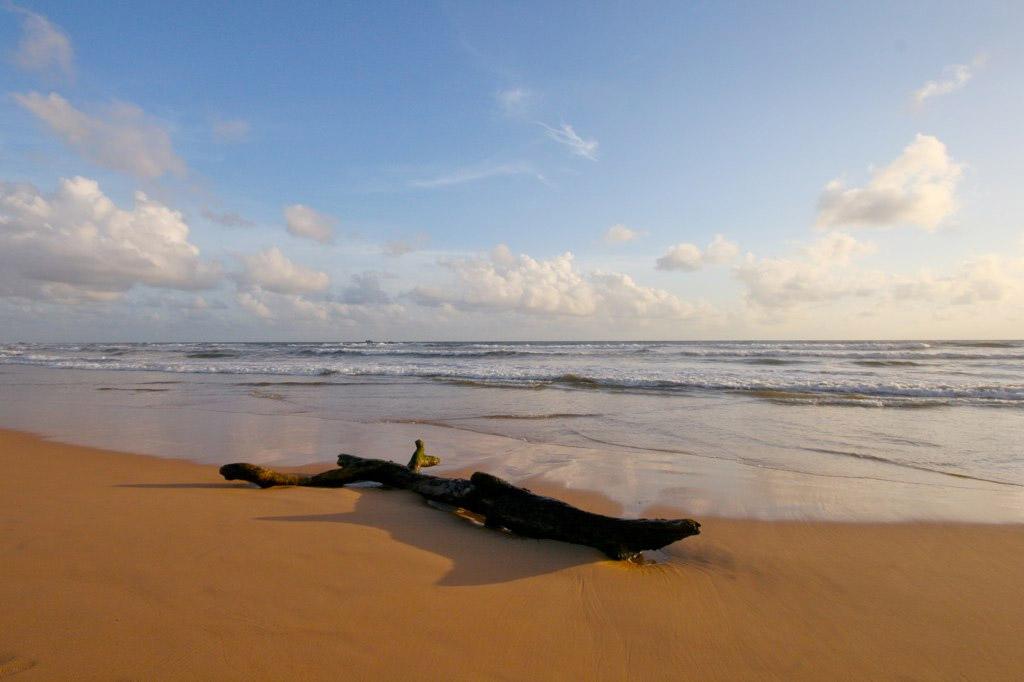 Пляж Бентота в Шри-Ланке, фото 9