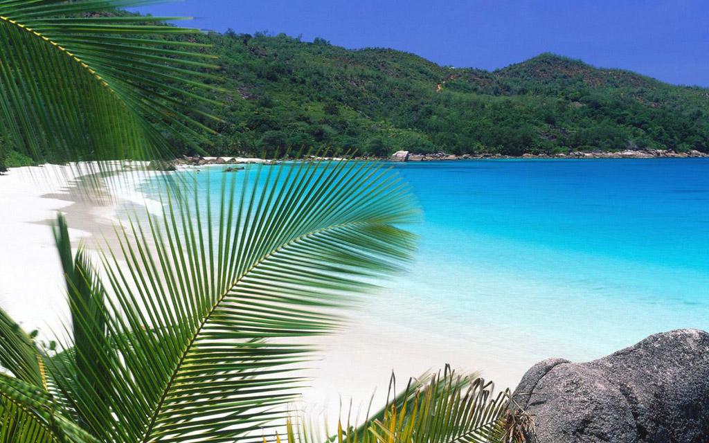 Пляж Фрегат на Сейшельских островах, фото 12
