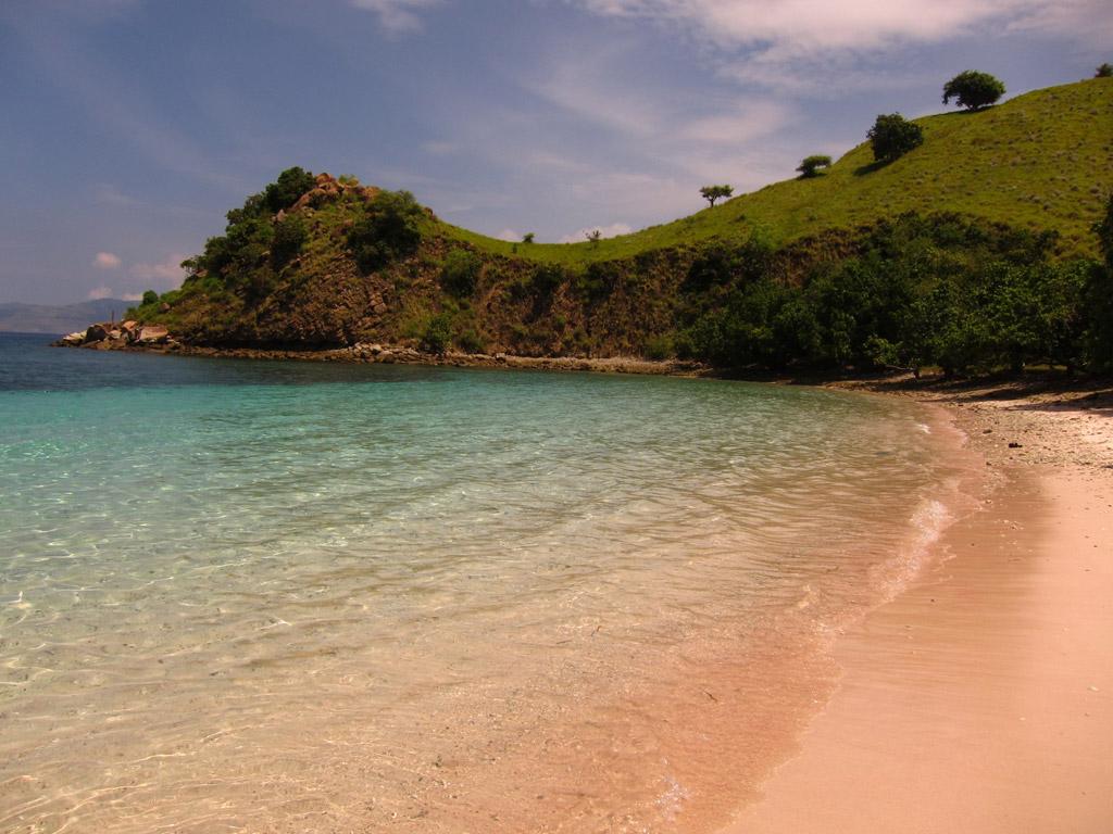 Пляж Пинк Бич в Индонезии, фото 4