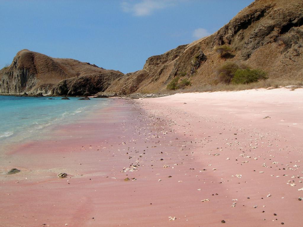 Пляж Пинк Бич в Индонезии, фото 7