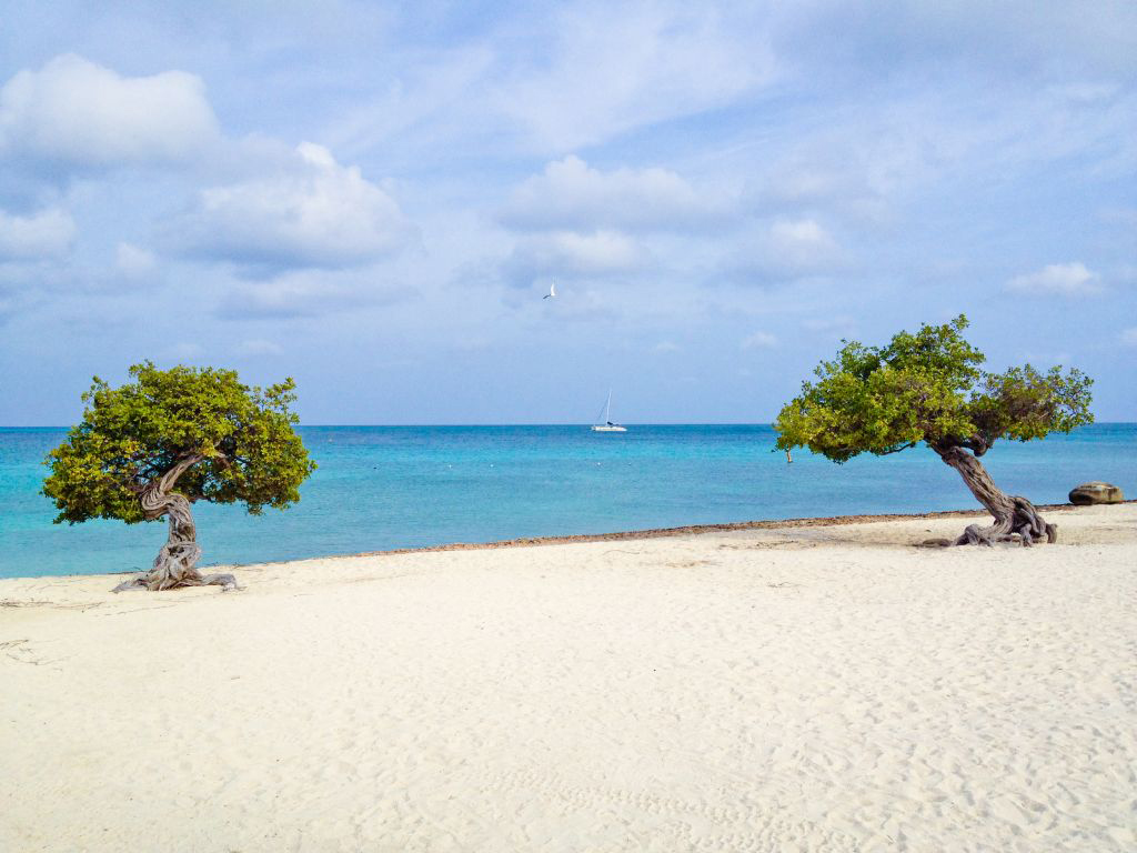 Пляж Игл Бич на Арубе, фото 13