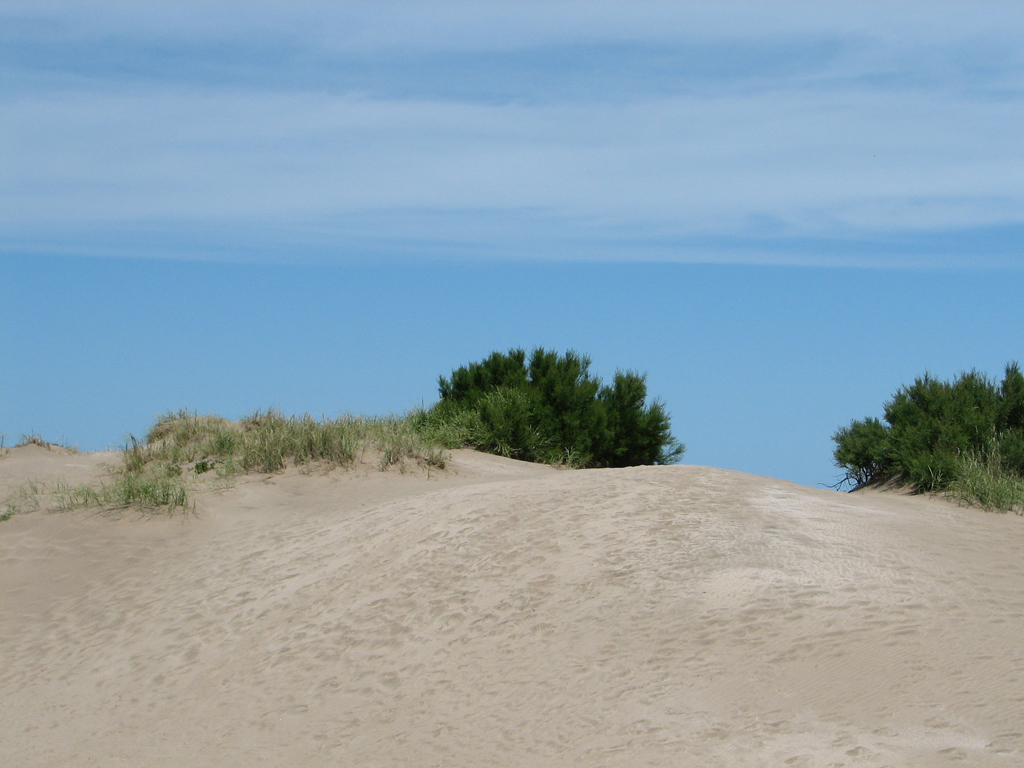 Пляж Карило в Аргентине, фото 2