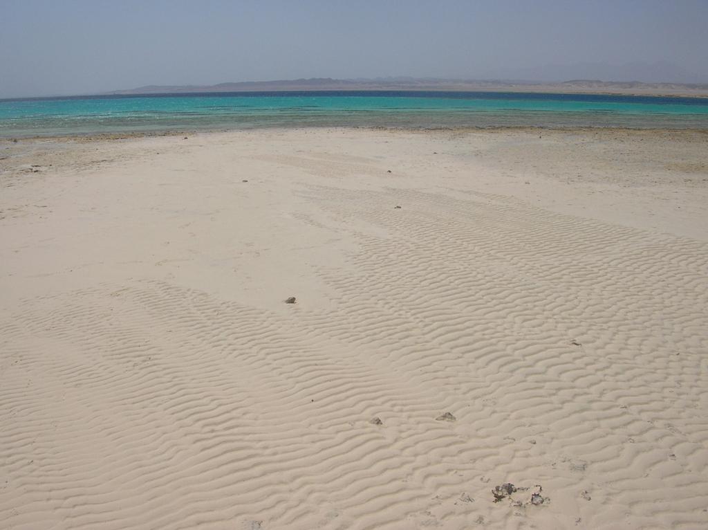 Пляж Марса-Алам в Египете, фото 7