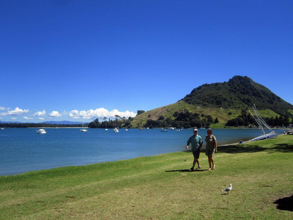 Пляж Маунгануи в Новой Зеландии, фото 3