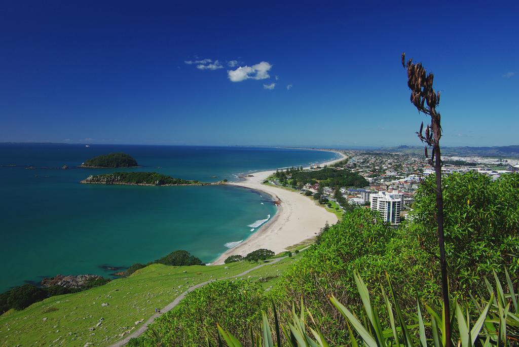 Пляж Маунгануи в Новой Зеландии, фото 7