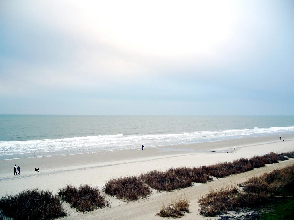 Пляж Миртл-Бич в США, фото 3