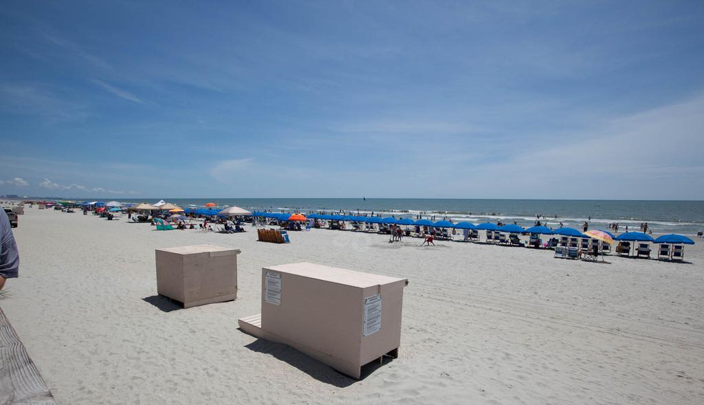 Пляж Миртл-Бич в США, фото 4